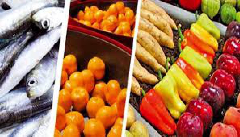 Les exportations marocaines de produits agroalimentaires ont atteint 3,1 millions de tonnes en 2018-2019